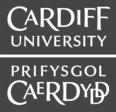 000%2f249%2f670%2flogo_list%2fcardiff-university.png?awsaccesskeyid=akiaireowwyth4flq4sa&expires=1544690163&signature=y1%2bqchwqiarxj4bp3fkfy3thg9w%3d&response-content-disposition=inline%3bfilename%3dcardiff-university